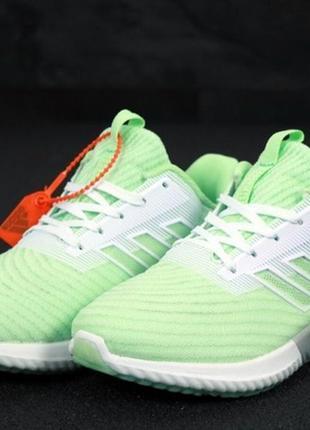 Летние женские кроссовки adidas climacool green.