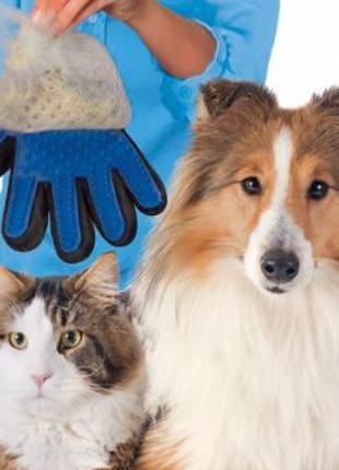 Перчатка для вычесывания шерсти животных,Pet Glove,True Touch,...