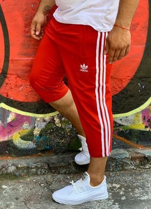 Мужские трикотажные бриджи красного цвета адидас, adidas, шорт...