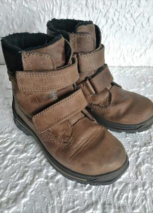 Демисезонные ботинки frank walker с мембраной polar-tex р-р 31