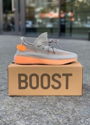 Кроссовки Adidas Yeezy Boost 350 True Form | Кросівки Адидас Изи