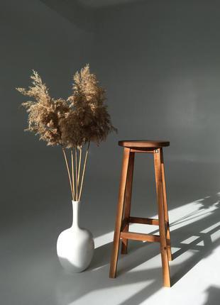 Пампасная трава, кортадерия, тростник, сухоцвет для декора