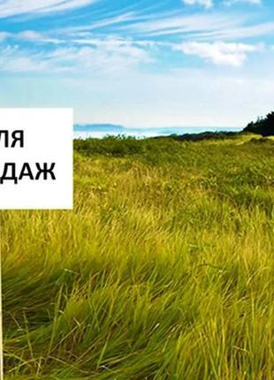 Аренда/Продажа земли 250 ГА, Херсонская обл. с.Александровка