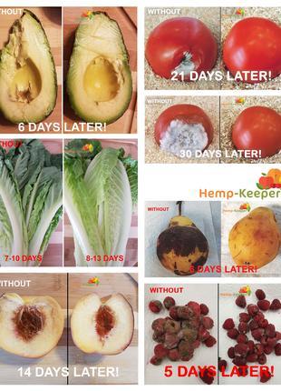Пищевые прокладки - естественный способ сохранить еду свежей