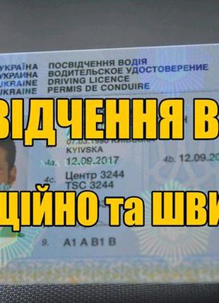 Помощь при получении Водительского удостоверения