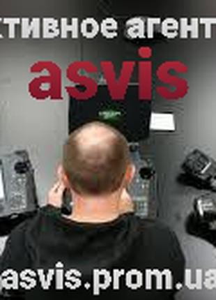 Asvis детективное агентство.