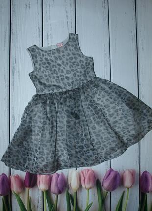 Красивое пышное платье i ❤ next