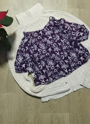 Топ блуза птички с паейтками new look