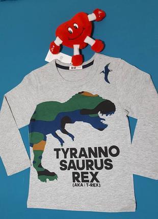 Реглан, футболка с рукавом р.120,130,140