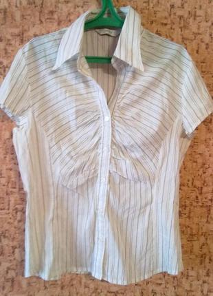 Летняя блузка с воротником и коротким рукавом от next