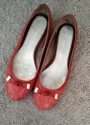 Global essentials туфли натуральная кожа