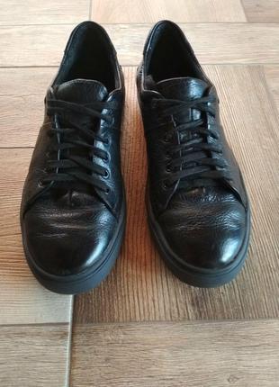 Мужская обувь (Кеды)