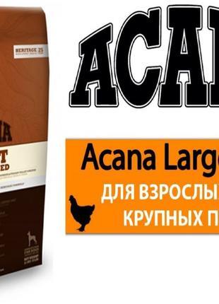 ACANA Adult Large (Акана) корм для собак крупных пород 17кг . ...