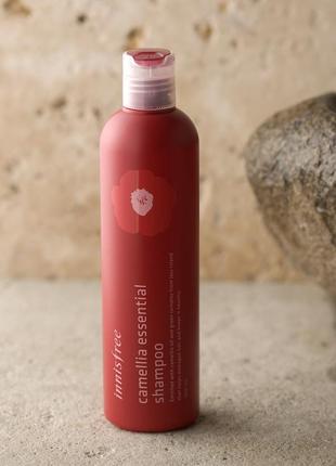 Безсиликоновый шампунь для волос innisfree camellia essential ...