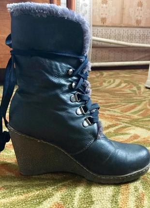 Сапоги сапожки ботинки полусапого полк сапожки черевики на тан...