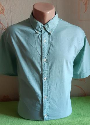 Стильная белая рубашка в бирюзовую клетку tommy hilfiger, mode...