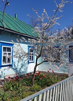 Продаю дом в 80км от Киева