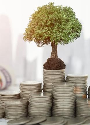 Готовлю инвестиционные проекты, финансовые модели, бизнес-планы