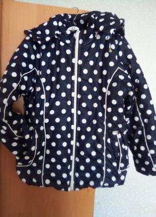 Демисезонная куртка на девочку в горошек