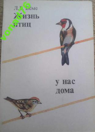 Книга Жизнь птиц у нас дома