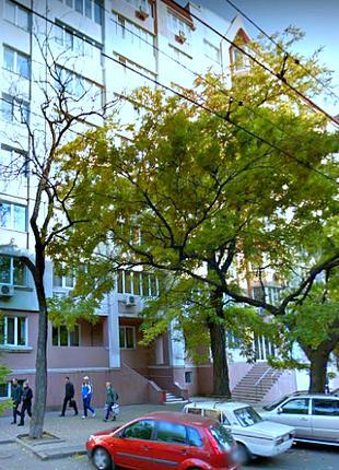 2 комнатная квартира ул.Новосельского