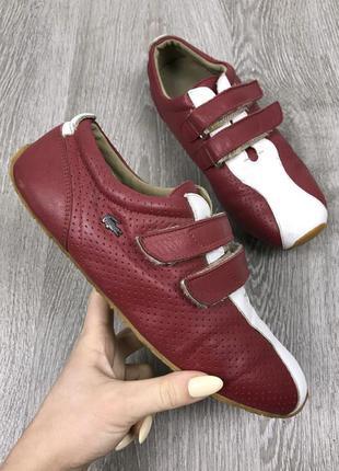 Классические кроссовки lacoste