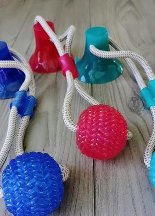 Интерактивная игрушка для собак канат на присоске с мячом к полу