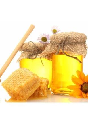 """Купуй екологічно чистий мед для себе і сім""""ї"""
