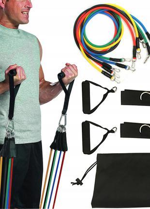 Набор для фитнеса эспандеров с петлями Supra Power Bands 5 жгутов