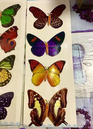 Метелик наклейка наліпка прикраса