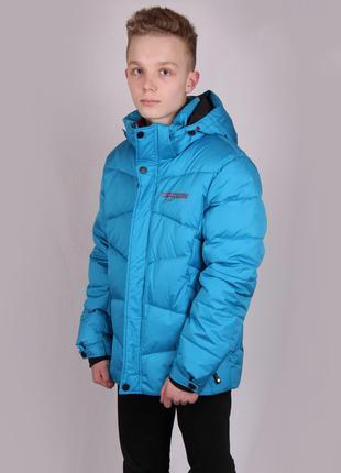Куртка мужская зимняя WHS 7342513 Avecs Размеры 54