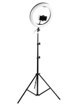 Кольцевая  лампа 36см с держатилес для телефона+штатив 2м+сумка