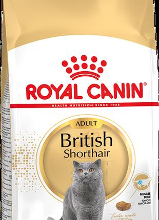 Royal Canin British Shorthair-сухой корм для кошек 10кг