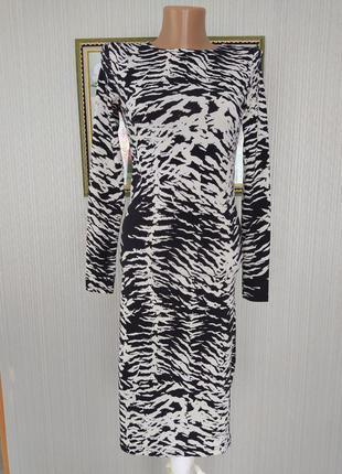 Сукня зебра 🔥