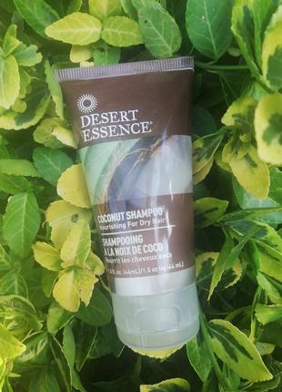 Desert essence шампунь с кокосовым маслом
