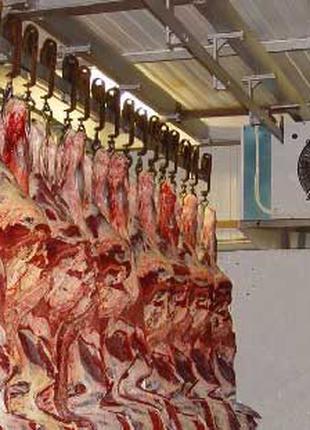 Холодильное оборудование для хранения мяса