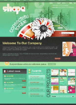 Создание/ разработка сайта
