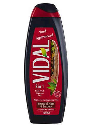 Vidal 3 в 1 мужской гель для душа