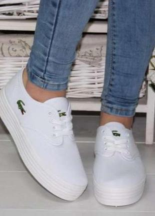 Белые криперы кеды кроссовки на толстой подошве
