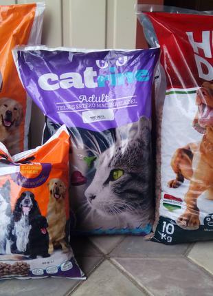 Корм для котів та собак