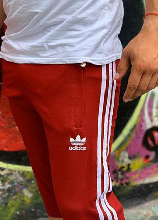 Мужские качественные трикотажные бриджи адидас, adidas, шорты