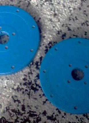 Блины (диски) для Штанги, Гантели 1 кг Titan