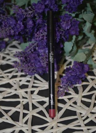 Фирменный контурный карандаш для губ barrym lip liner