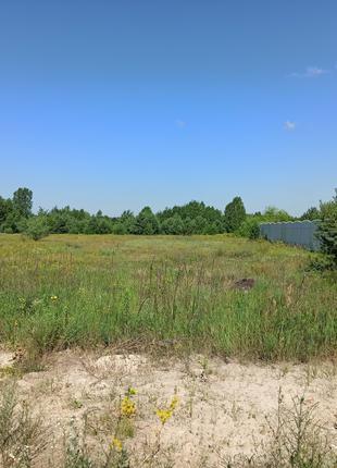 Продам земельный участок 10 соток в обуховском районе Козин Плюты