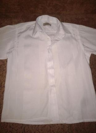 Рубашка на мальчика, 30 размер