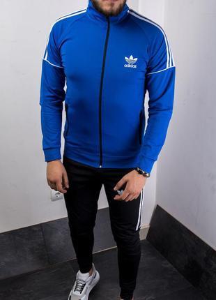 Яркий мужской спортивный костюм адидас синий adidas