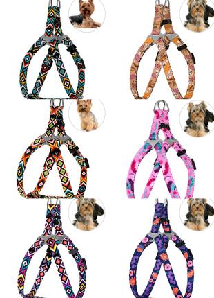 Шлея для собак мелких пород в этническом стиле