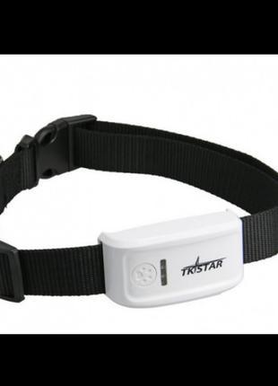 Влагостойкий GPS трекер для собак TKSTAR TK909