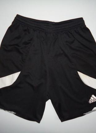 Шорты спортивные adidas climalite черные (m)
