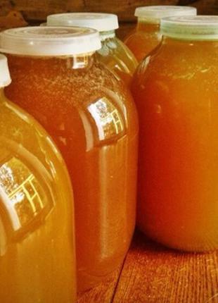 Продам мед подсолнечника